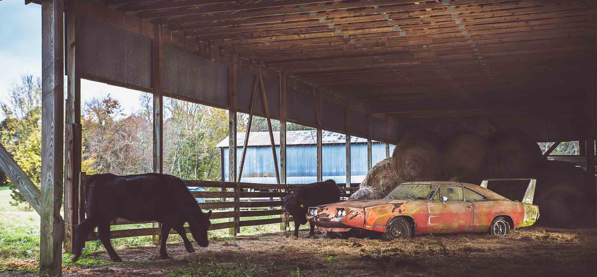 1969 Dodge Daytona Charger Barn Find | Alabama | Photos